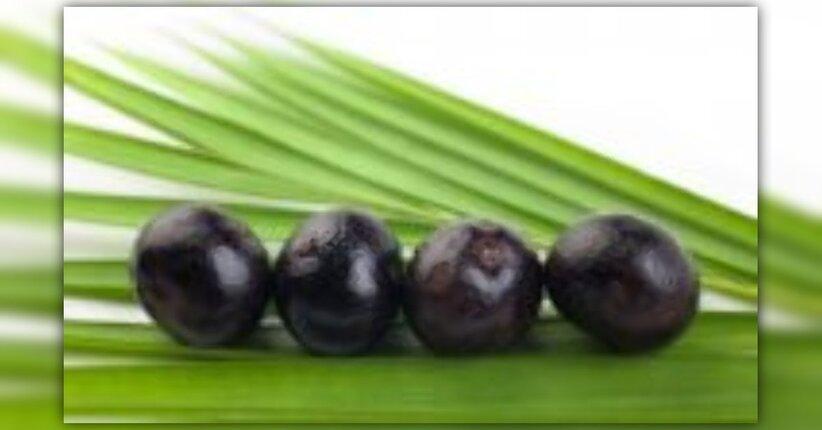 Succo di frutta di Acai