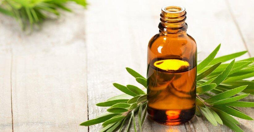 Tea tree oil: tutti gli usi!