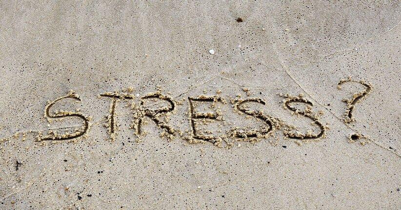 Un rimedio naturale per lo stress