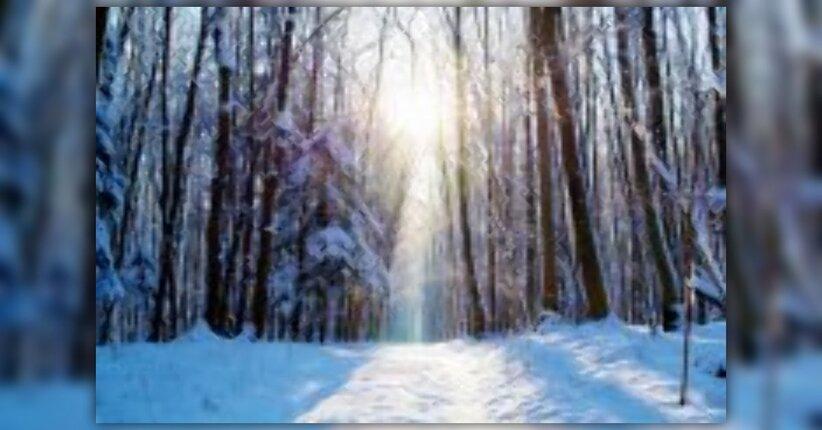 Vitamina D: portate sole e salute nel vostro inverno!