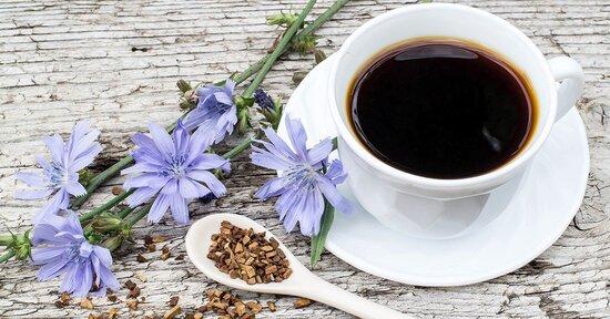 Benefici e utilizzo del caffè di cicoria