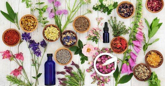 Floriterapia: in quanto tempo fanno effetto i Fiori?