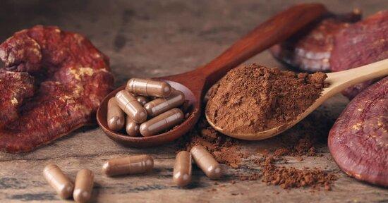 Reishi, chaga e shiitake: i benefici dei funghi medicinali