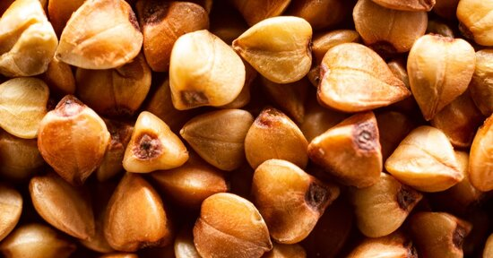 Germe di grano saraceno