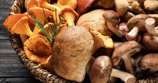 I betaglucani dei funghi