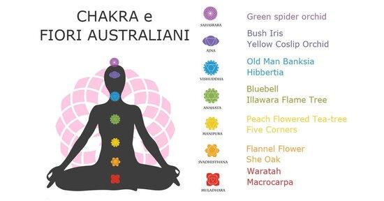 I fiori australiani per riequilibrare i chakra