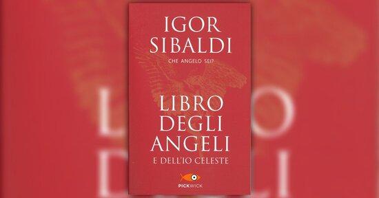 """Istruzioni per l´uso - Estratto da """"Libro degli Angeli e dell´Io Celeste"""" di Igor Sibaldi"""