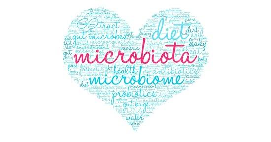 Nutri il tuo microbiota