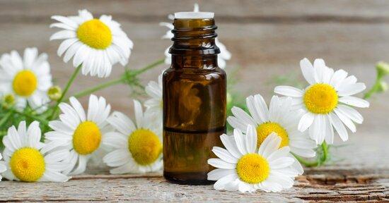 Olio essenziale di camomilla: proprietà e benefici