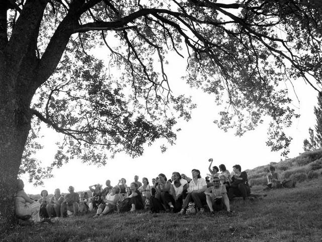 Gli spiriti degli alberi di remedia - Libro la locanda degli amori diversi ...