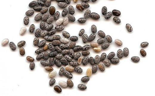 semi-chia-biologici-senza-glutine-vitamine-fibre
