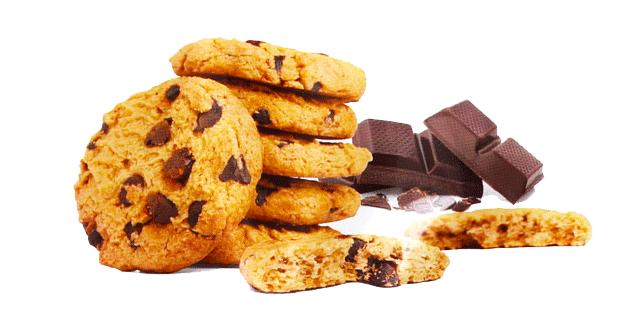 Vegan Biscotti al Cioccolato con Riso Germogliato