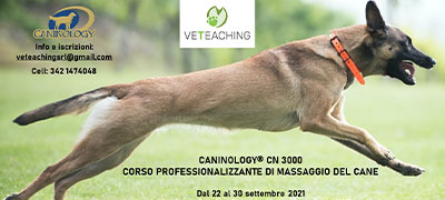 evento Veteaching / caninology 2021
